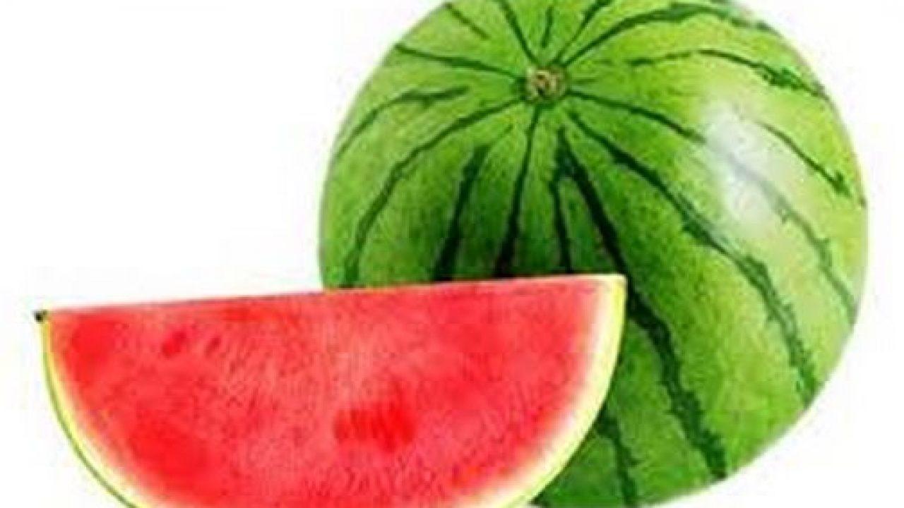 Hasil gambar untuk semangka