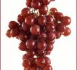 10 Manfaat Buah Anggur Bagi Tubuh dan Kulit