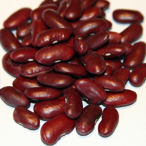 10 Manfaat Kacang Merah Yang Luar Biasa Bagi Kesehatan