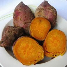 Hasil gambar untuk ubi
