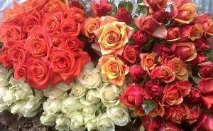 Manfaat Bunga Mawar