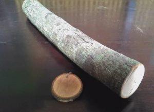 kayu naga sari
