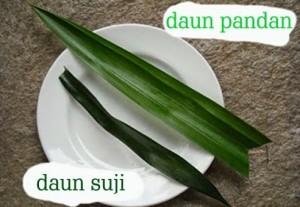 manfaat daun suji