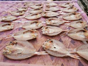 12 Manfaat Ikan Asin Bagi Kesehatan