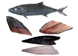 manfaat ikan gindara