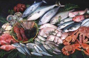 manfaat ikan laut