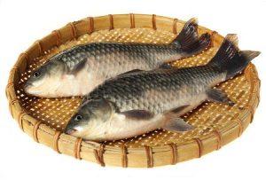 manfaat ikan mas