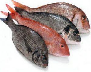 manfaat ikan nila