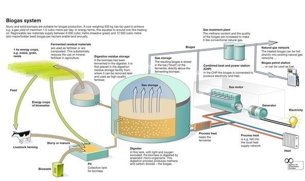 Manfaat Biogas Dalam Kehidupan Sehari Hari Manusia