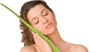 manfaat lidah buaya untuk kulit