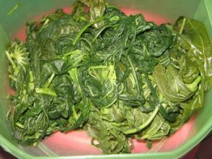 manfaat rebusan daun pepaya