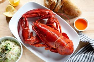 manfaat lobster