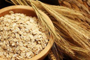 manfaat oat