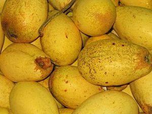 manfaat buah wani