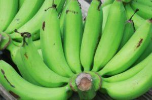 pisang hijau