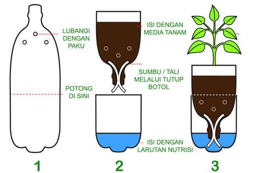 34 Manfaat Hidroponik Bagi Petani Lingkungan dan Masyarakat